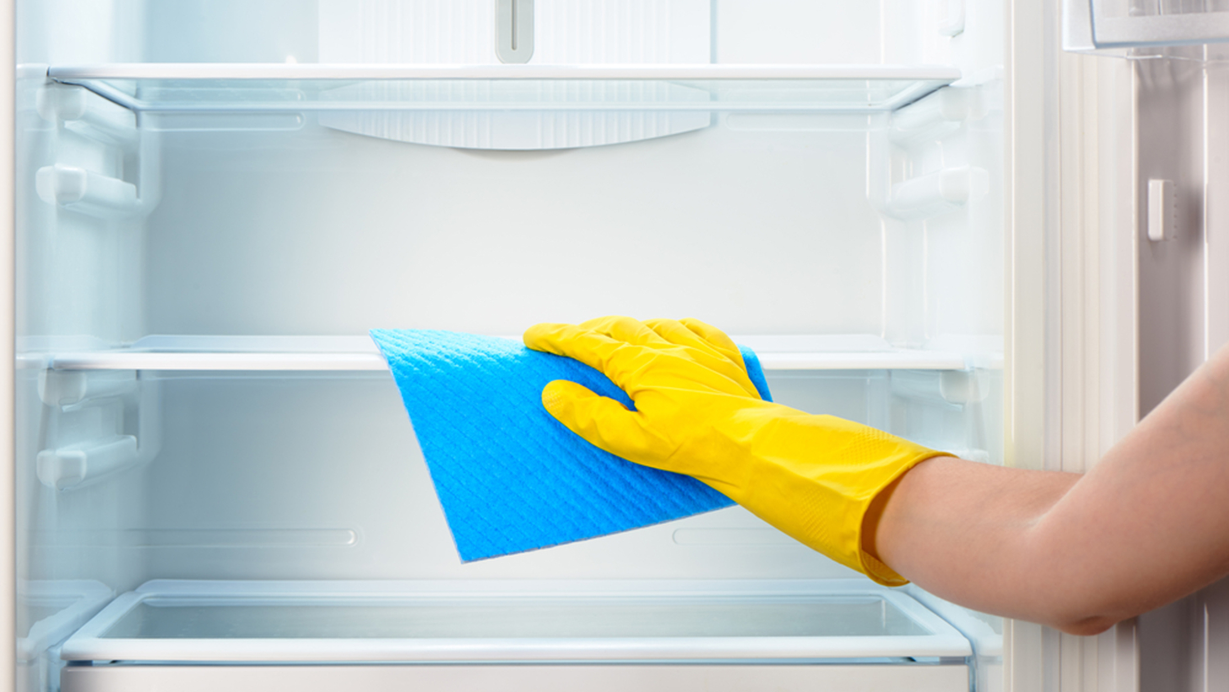 cleaning-fridge-today-tease-1-160114_cd17100056604e4ad349068b6624e3d9